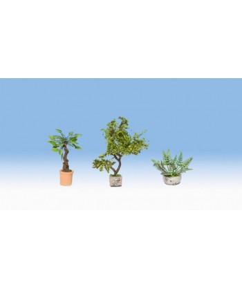 NOCH H0 14018 – Piante e fiori ornamentali (3 pz)